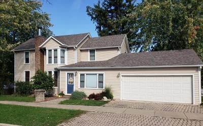 Lemont Single Family Home For Sale: 519 Warner Avenue