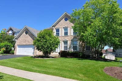 Hoffman Estates Single Family Home For Sale: 5382 Galloway Drive