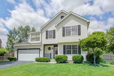 Fox Lake Single Family Home For Sale: 8514 Cedar Street