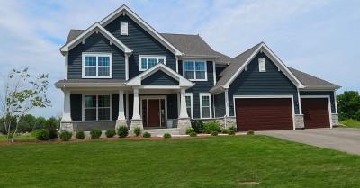 Grayslake Single Family Home New: 232 Frances Drive