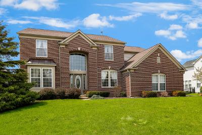 Algonquin Single Family Home For Sale: 550 Brookside Avenue