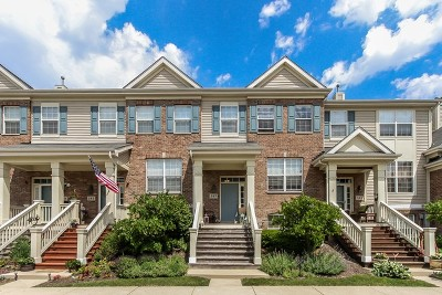 Bartlett Condo/Townhouse For Sale: 387 Broadmoor Lane