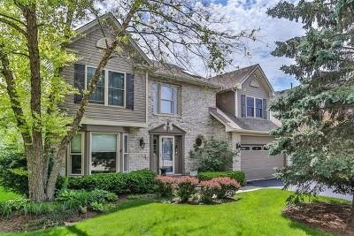 Hoffman Estates Single Family Home For Sale: 1725 Nicholson Drive