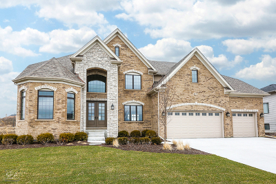 Naperville Single Family Home For Sale: 4275 Lacebark Lane