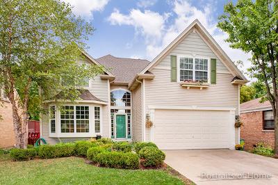 Wheaton Single Family Home For Sale: 215 South President Street
