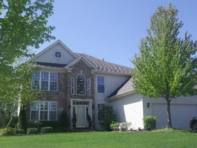 Palatine Single Family Home For Sale: 933 West Aspen Court