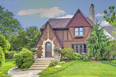Glen Ellyn Single Family Home For Sale: 347 Lorraine Street