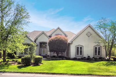 Burr Ridge Single Family Home For Sale: 9301 Cascade Circle