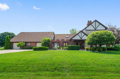 Downers Grove Single Family Home For Sale: 8420 Cessna Lane