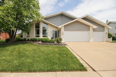 Tinley Park Single Family Home For Sale: 8450 Meadows Edge Trail