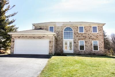 Barrington Single Family Home For Sale: 600 Chesterfield Lane