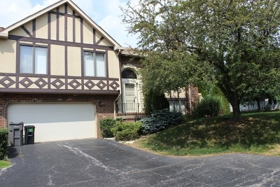 Tinley Park Condo/Townhouse Re-Activated: 9240 Drummond Drive #9240