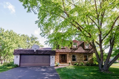 Crystal Lake Single Family Home New: 6702 Meadow Drive