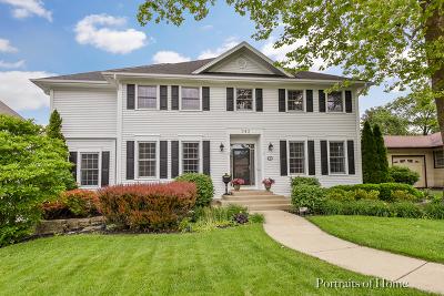 Glen Ellyn Single Family Home For Sale: 343 Spring Avenue
