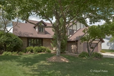 Palatine Single Family Home For Sale: 5808 North Corona Drive