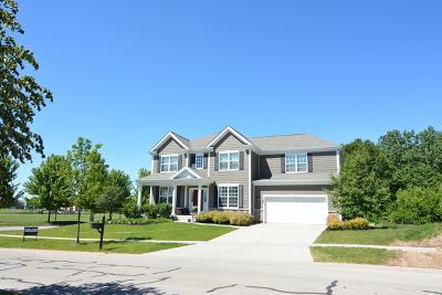 Elgin Single Family Home For Sale: 728 Goodfield Landing