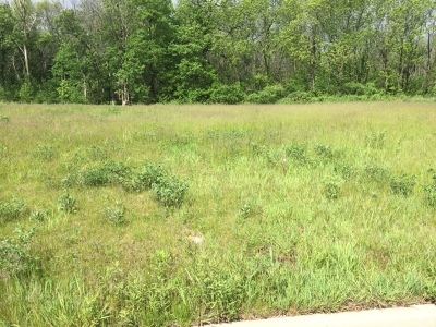 Genoa Residential Lots & Land For Sale: 1105 Secretariat Drive