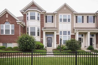 Orland Park Condo/Townhouse For Sale: 10615 West 153rd Street