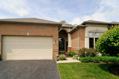 Palatine Condo/Townhouse For Sale: 789 North Virn Allen Court