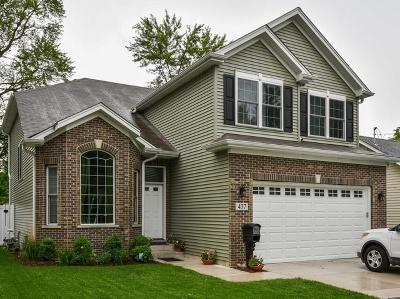 Wheaton Single Family Home For Sale: 162 Knoll Street