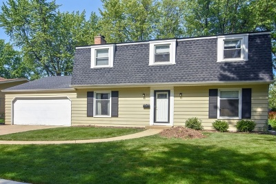 Palatine Single Family Home For Sale: 957 North Ventura Drive