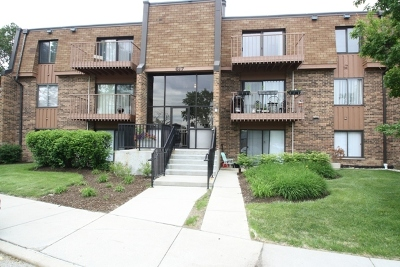 Schaumburg Condo/Townhouse For Sale: 617 Limerick Lane #3D
