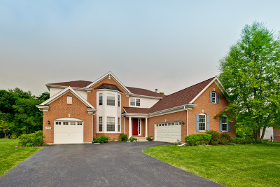 Lake Zurich Single Family Home For Sale: 555 Orchard Pond Drive
