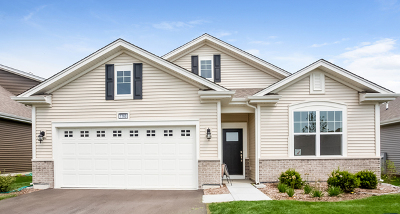 Single Family Home For Sale: 1160 Americana Avenue