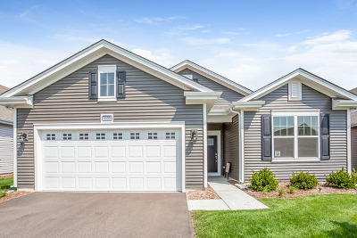 Single Family Home For Sale: 1130 Americana Avenue