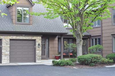 Darien Condo/Townhouse For Sale: 1145 Lacebark Court #1145