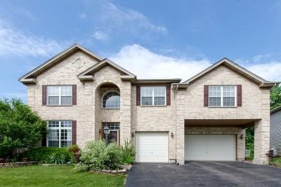 Carpentersville Single Family Home For Sale: 4709 Windridge Court