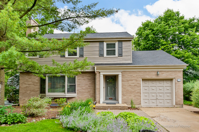Glen Ellyn Single Family Home For Sale: 198 Exmoor Avenue