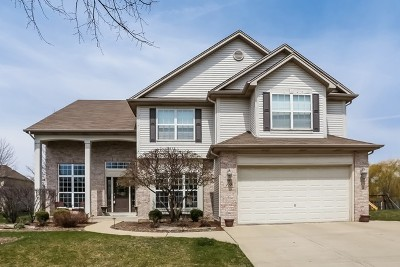 South Elgin Single Family Home For Sale: 19 Lake Ridge Court