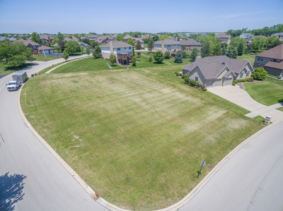 Lockport Residential Lots & Land For Sale: 16064 West Red Cloud Drive