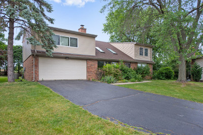 Palatine Single Family Home For Sale: 66 West Brentwood Drive