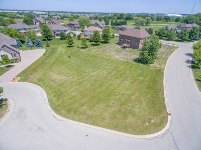 Lockport Residential Lots & Land For Sale: 16118 West Blackhawk Drive