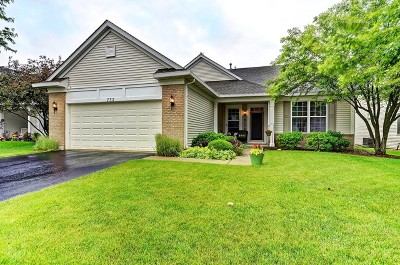 Romeoville Single Family Home Contingent: 732 Holland Lane