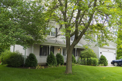 Elgin Single Family Home For Sale: 2029 Valley Creek Drive