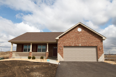 New Lenox Single Family Home For Sale: 2445 Dundee Drive