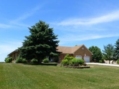 Monee Single Family Home For Sale: 27544 Kuersten Road