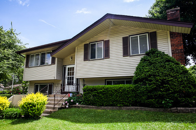 Schaumburg Single Family Home For Sale: 1823 Dover Court