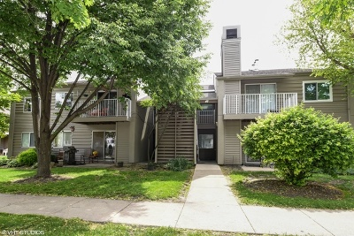 Lombard Condo/Townhouse For Sale: 47 Orchard Terrace #7