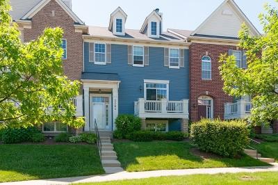 Carol Stream Condo/Townhouse For Sale: 1121 Orangery Court #1121