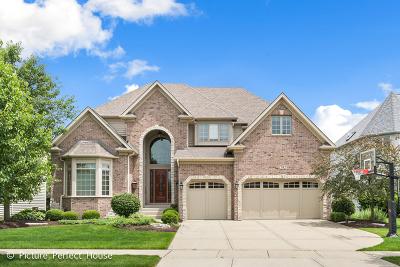 Ashbury Single Family Home For Sale: 2912 Willow Ridge Drive