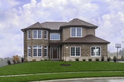 Lemont Single Family Home For Sale: 12776 Rosa Lane
