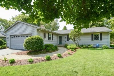 Algonquin Single Family Home For Sale: 605 Gaslight Drive