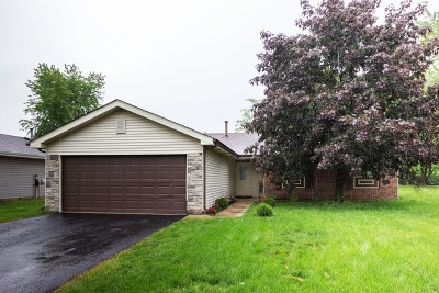 Bolingbrook Single Family Home For Sale: 224 North Janes Avenue North