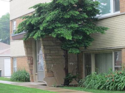 Bellwood Condo/Townhouse For Sale: 3512 Warren Avenue #5