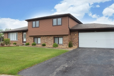 Tinley Park Single Family Home For Sale: 8419 Westberry Lane