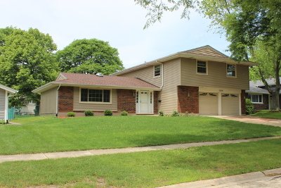 Schaumburg Single Family Home For Sale: 1008 Carlton Lane